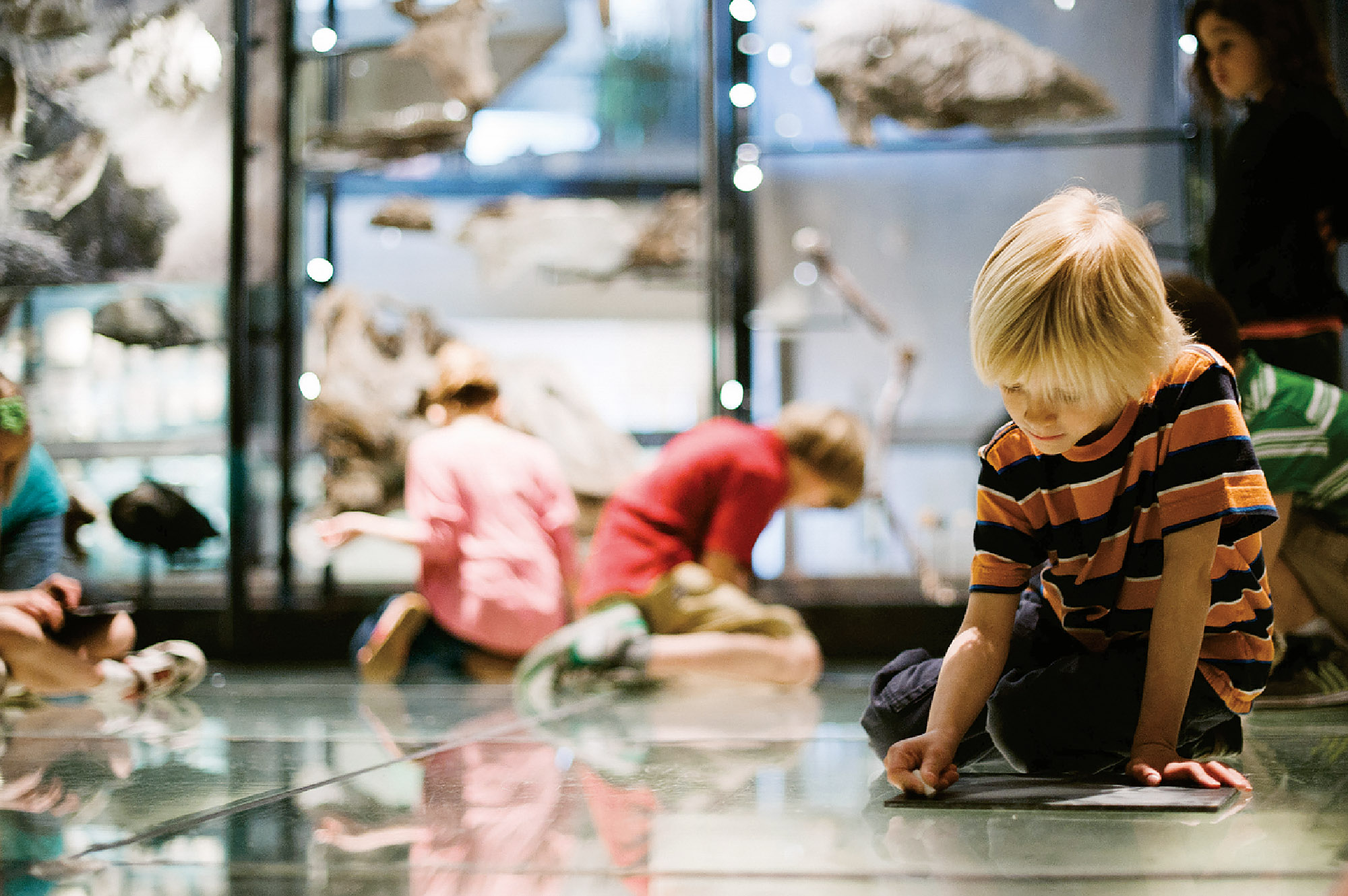 Saturday Discovery Classes at NHMU in Salt Lake City