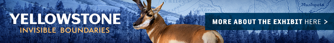 """""""Yellowstone Invisible Boundaries. More about the exhibit here >"""""""