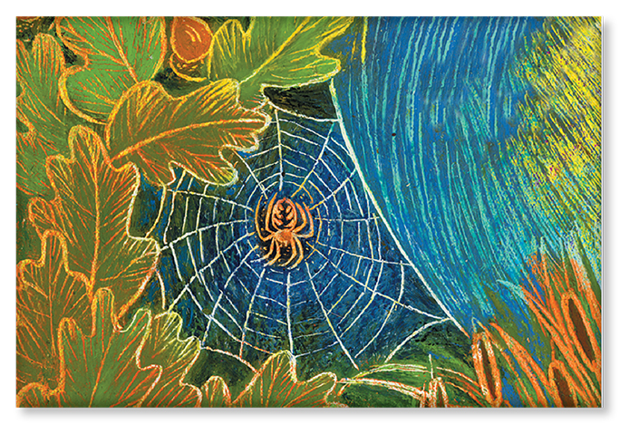 An illustration of a spider on a web