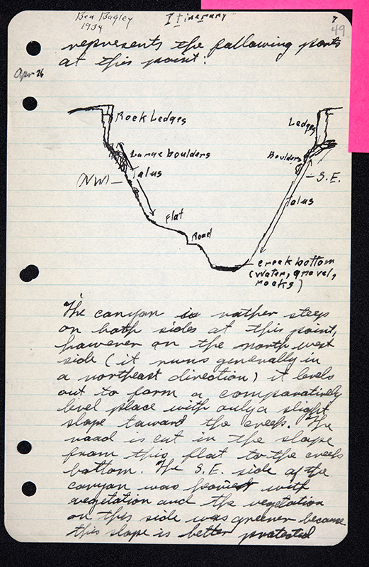 A page of handwritten field notes.