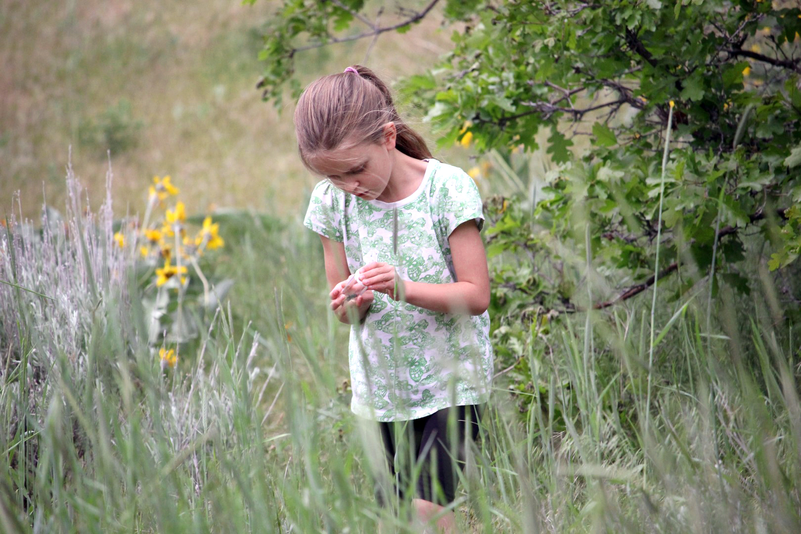 Young girl exploring nature in a field.