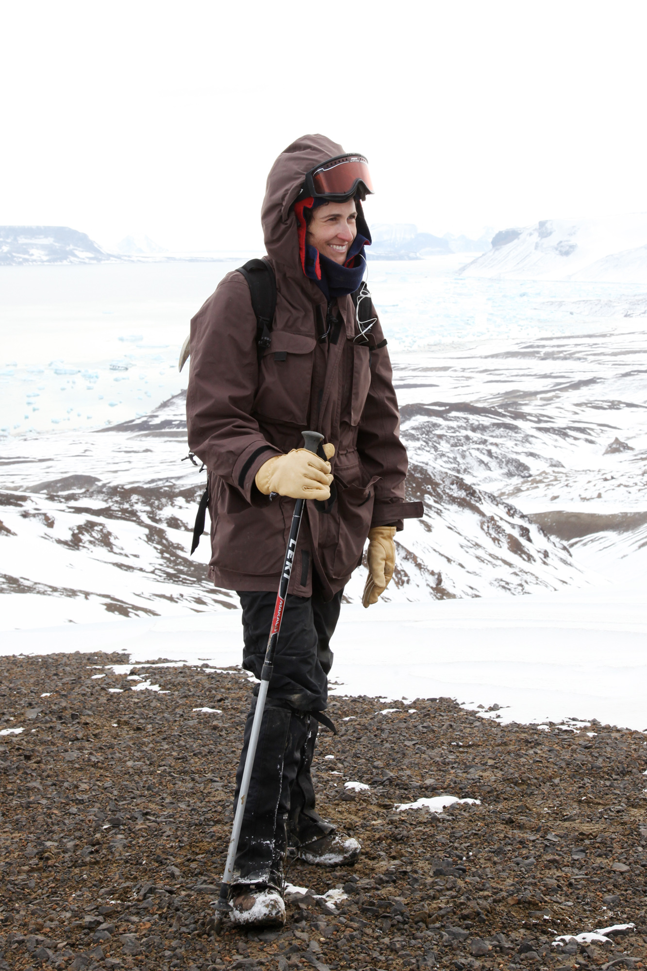 A scientist in a large coat stands on a ridge in a frozen landscape.