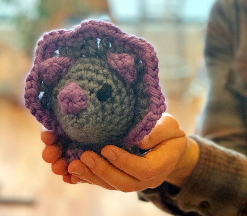 A crocheted triceratops