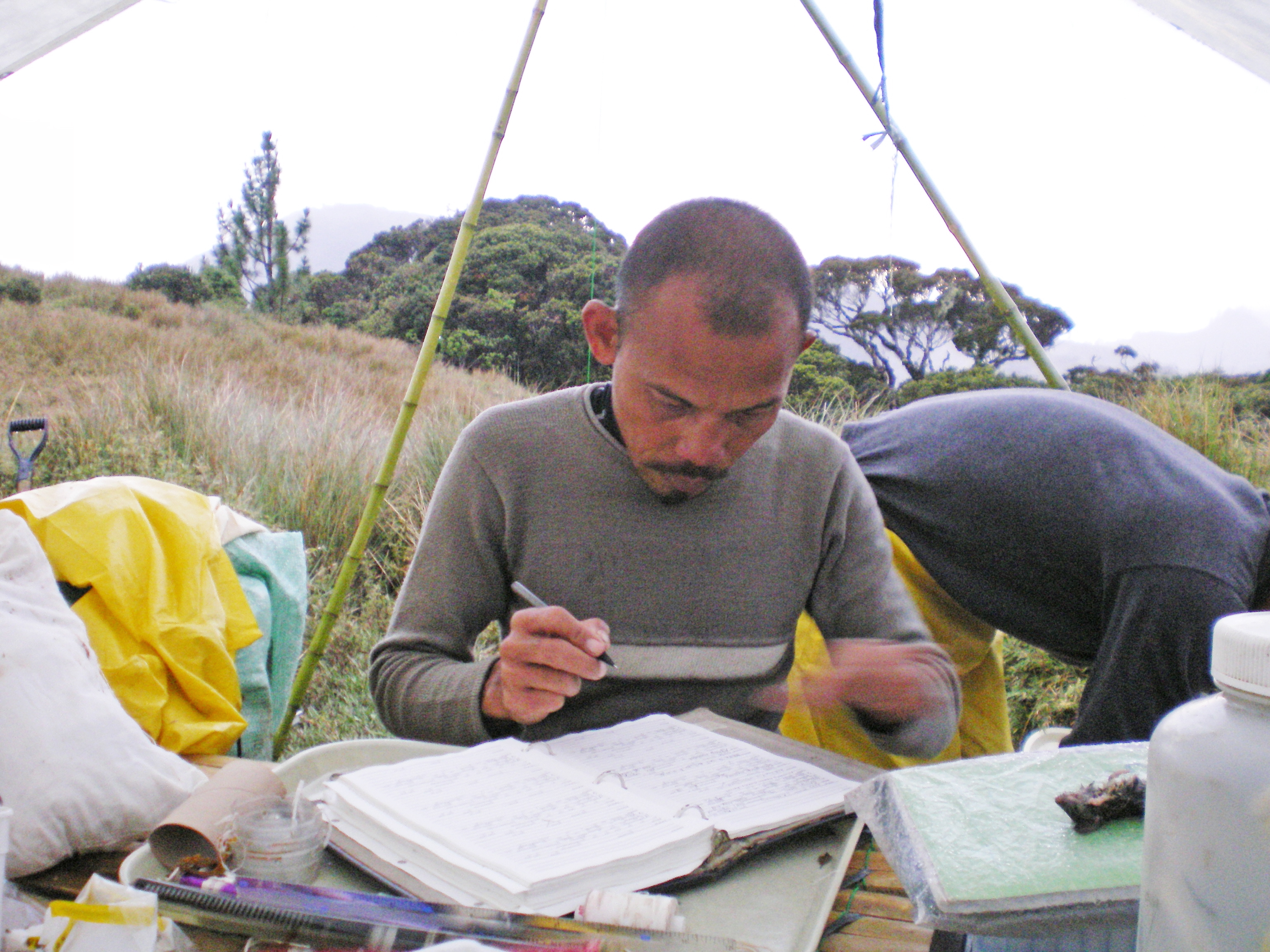 Researcher taking notes in the field