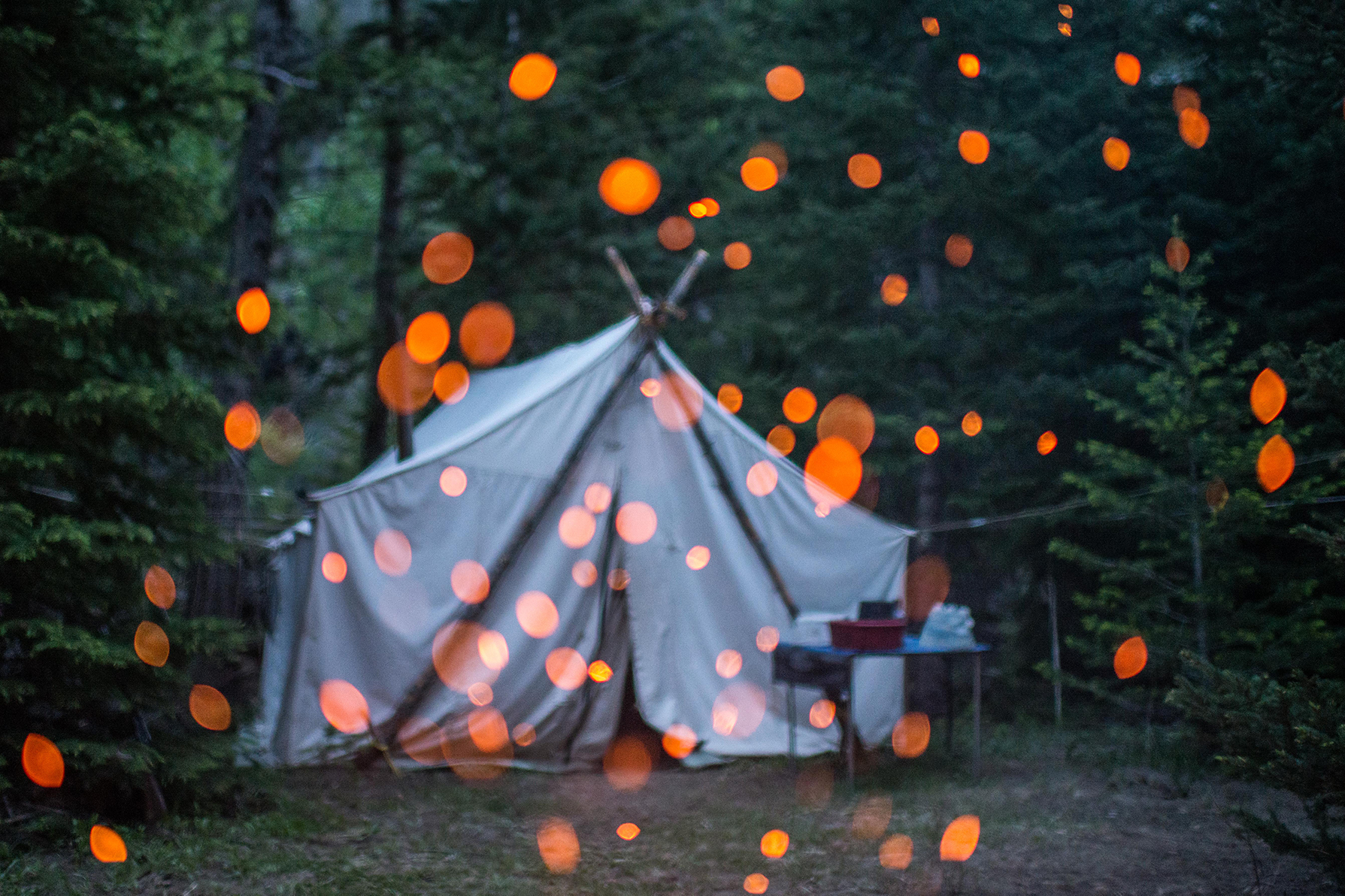 Tent in Wyoming backcountry used by researchers and outfitters during elk migration