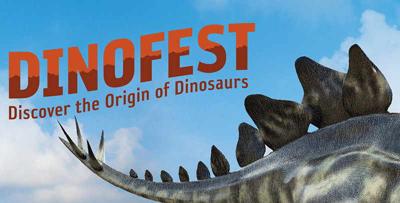 "A Stegosaurus tail with the title ""DinoFest: the Origin of Dinosaurs"""