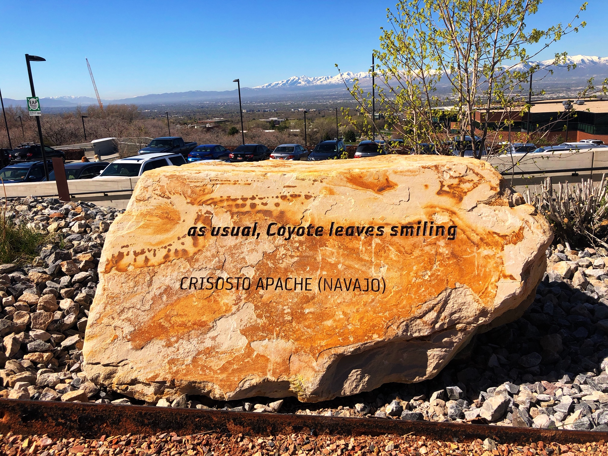 "Photo of one of the new stones with poetry excerpt visible stating: ""As usual, coyote leaves smiling"""