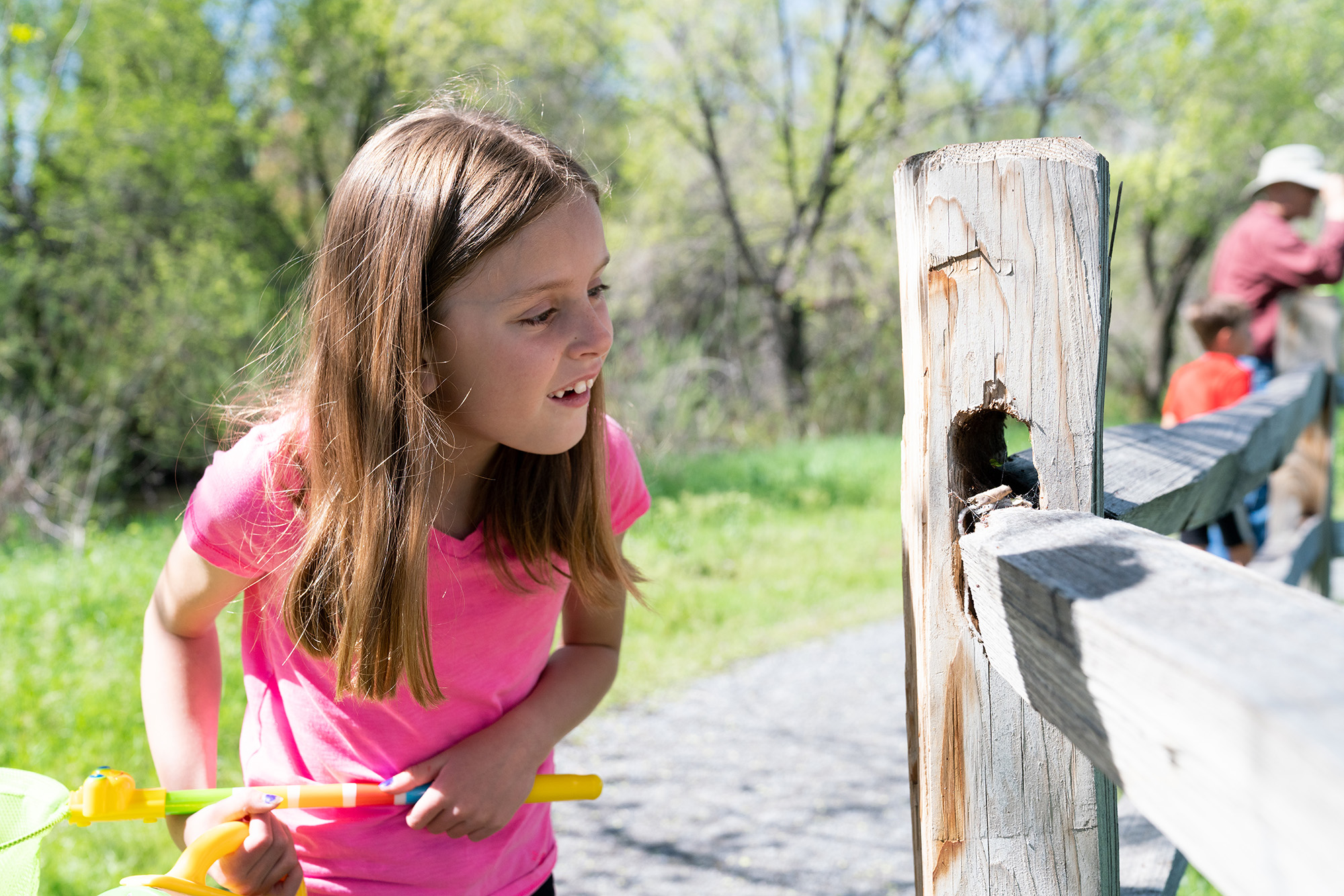 A girl looks at a bug on a fence.