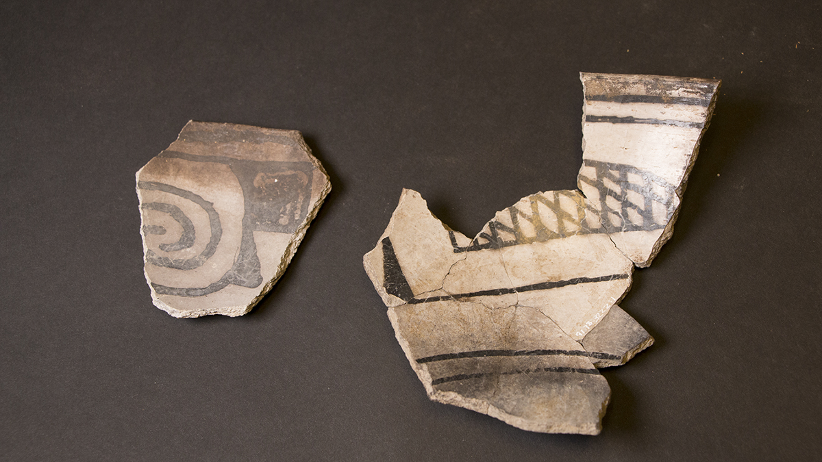 Pottery sherds found at Baker Village display designs common of neighboring peoples, such as Kayenta Anasazi. Photo © NHMU.