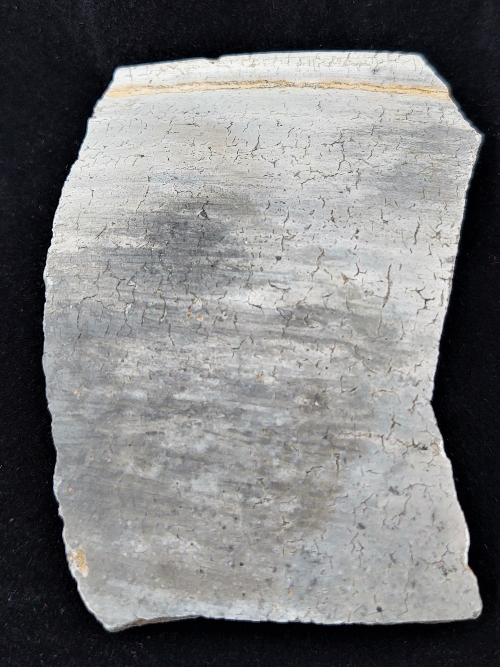 The back of the pottery sherd