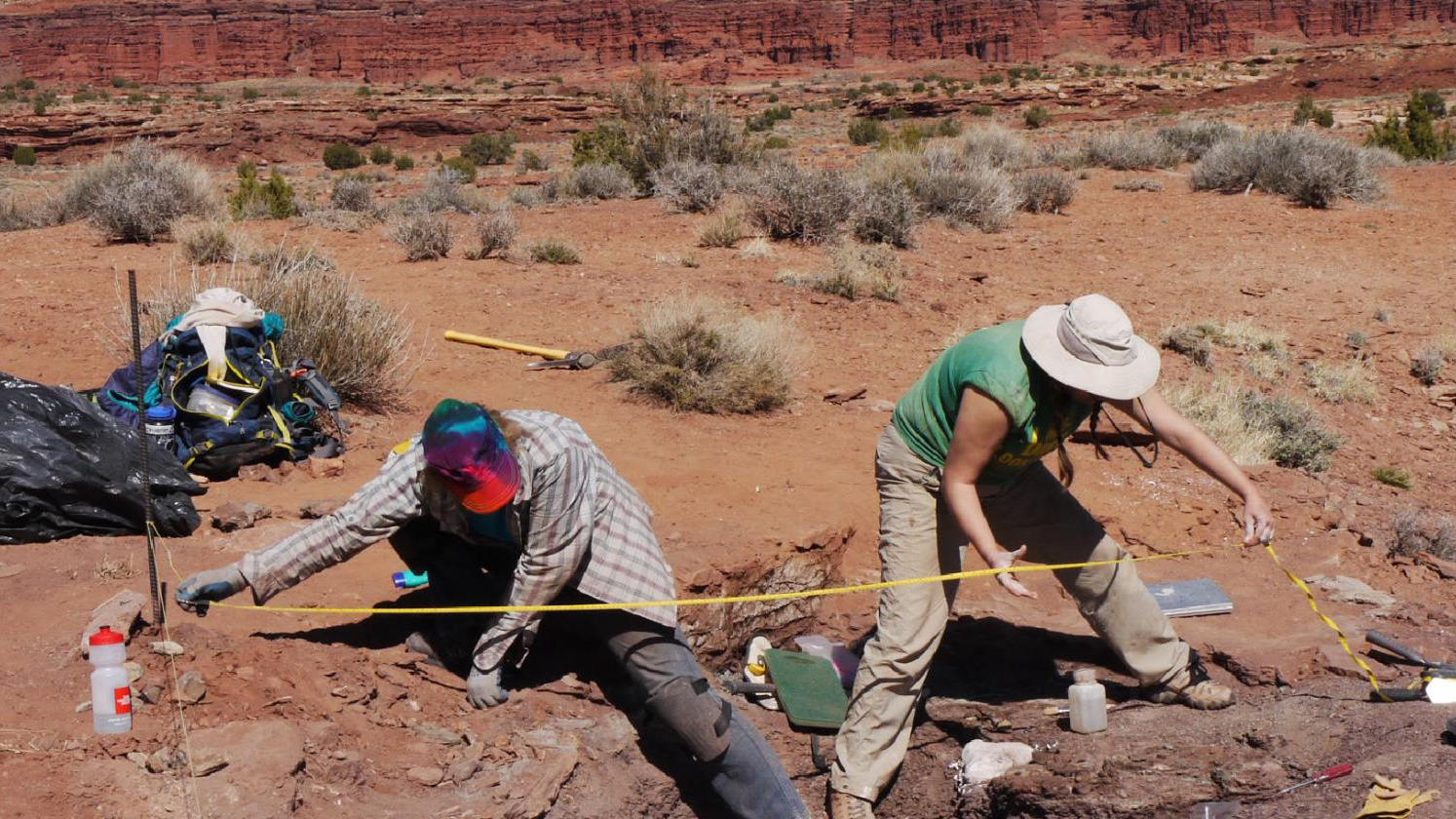 Paleontologists digging in the desert.