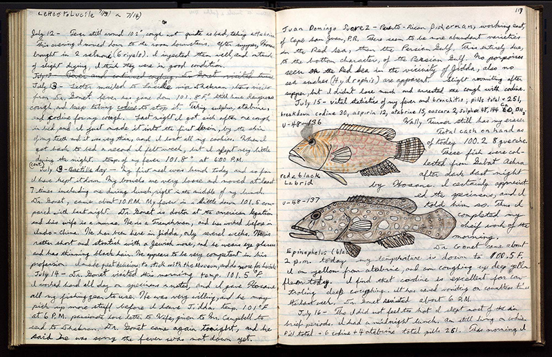 A page of field notes with cursive handwriting and pictures of fish.