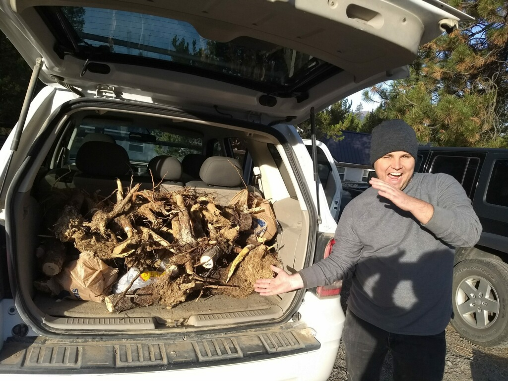 image of researcher in the field exuberantly showing off specimens of fungi collected and visible in the back of an SUV.