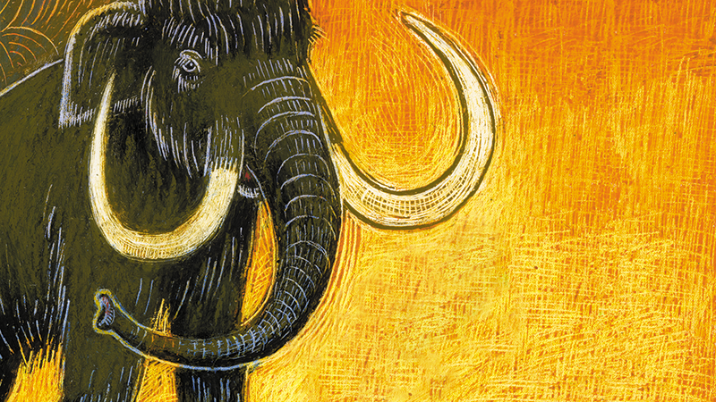 An illustration of a mammoth.