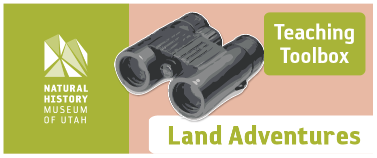 Teaching Toolbox: Land Adventures