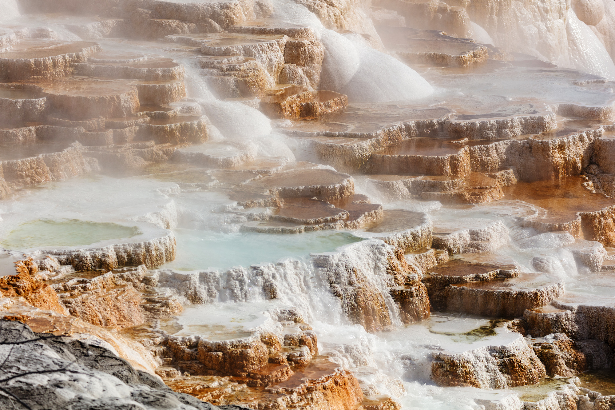 The terraces of a hot spring.