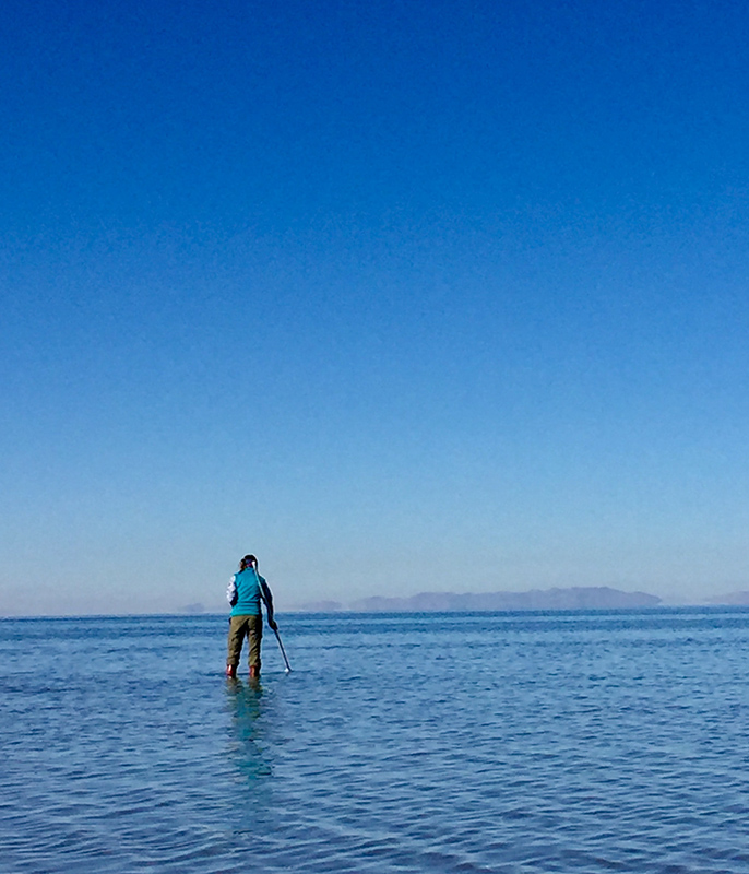 Scientist Courtney Wagner stands in shallow water of the Great Salt Lake.