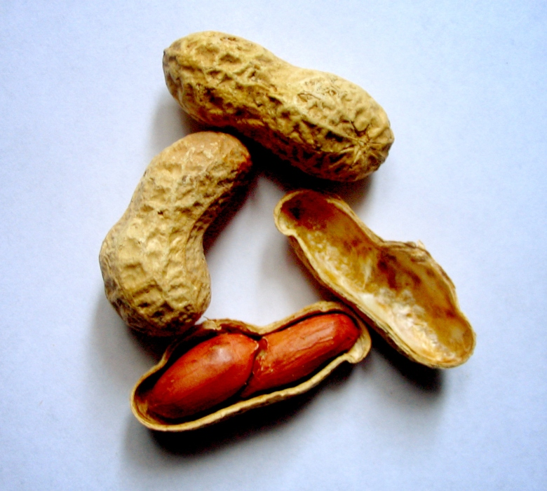 Several peanuts, one open to show the edible part inside.