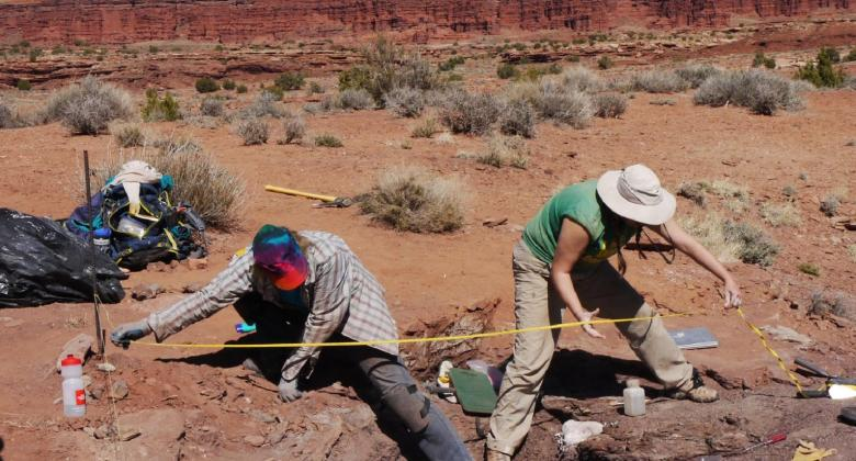 paleontologists working in the field with in a redrock landscape