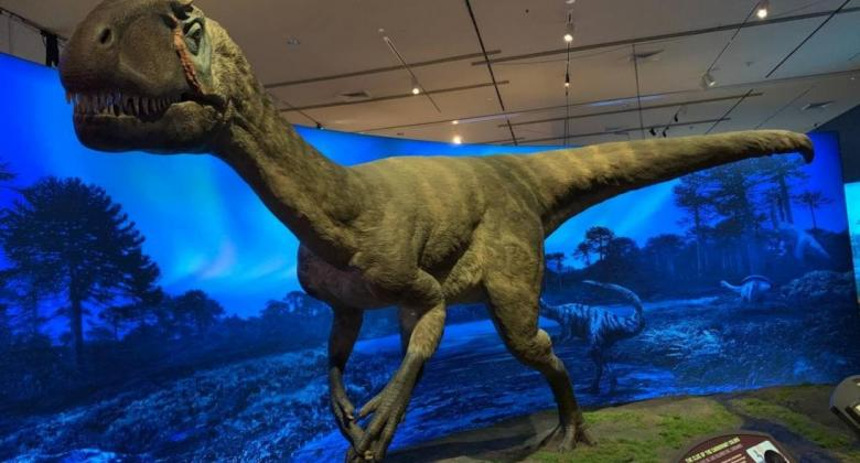 A life-size model of the two-legged dinosaur Cryolophosaurus, a predator with a crest on its head and a coating of fuzz on its body.