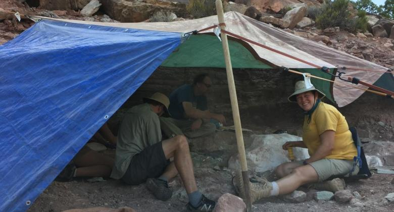 Paleontologists under a tarp excavate around white jackets containing the bones of a long-necked dinosaur.