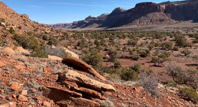 A vista of the red stone found in Utah's eastern desert.