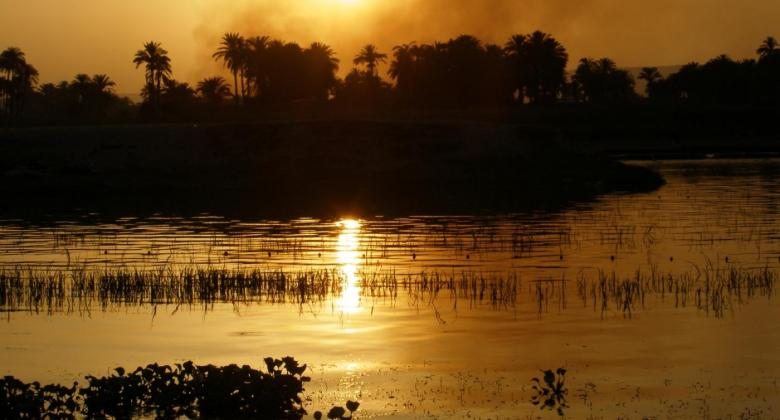 Golden light over the Nile River, with palm trees and reeds in shadow.