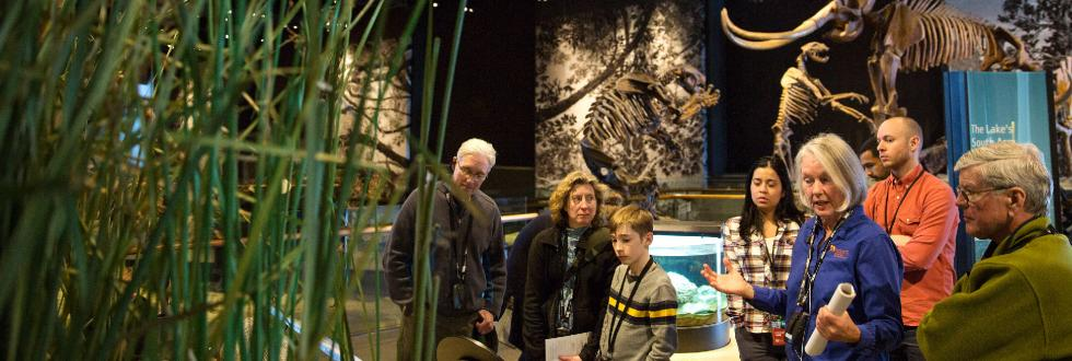 Highlights Tours at NHMU