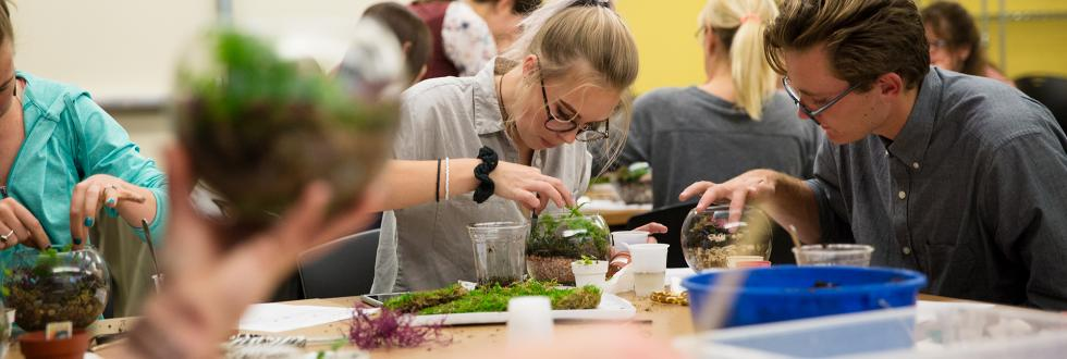 Craft Workshop: Terrariums, at NHMU