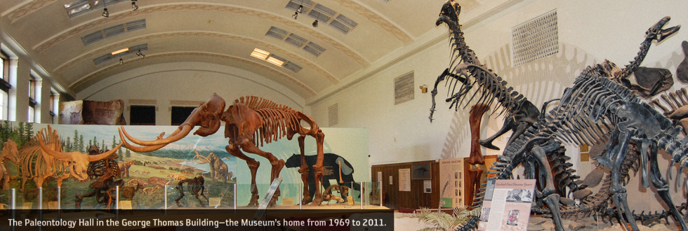 The Paleontology Hall in the George Thomas Building