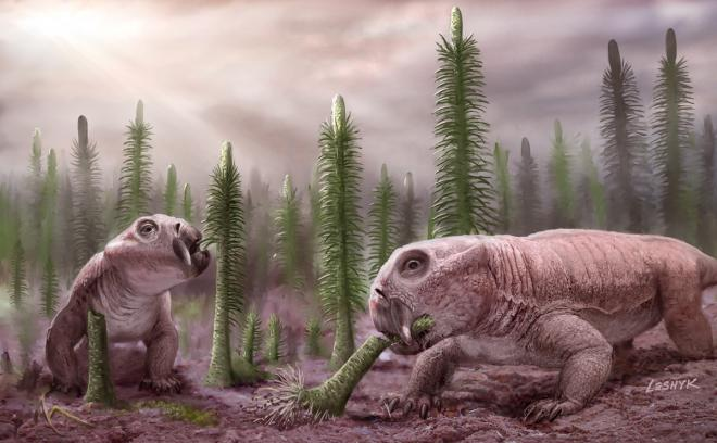 Image result for end permian extinction