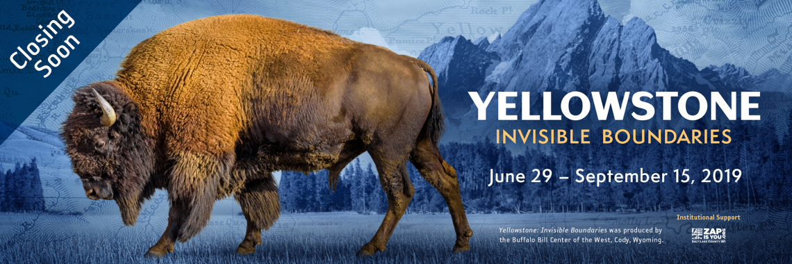 """A bison and the text """"Yellowstone: Invisible Boundaries. Closing Soon."""""""